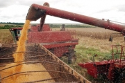 Balança comercial do agronegócio registra superávit de US$ 8,38 bilhões em maio